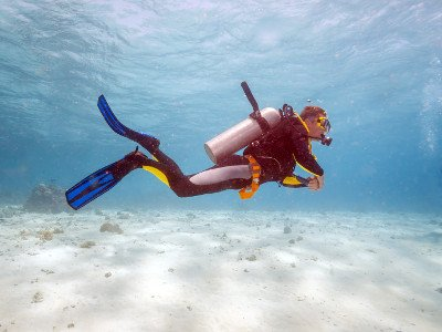 DIVING E DRAGHI A KOMODO